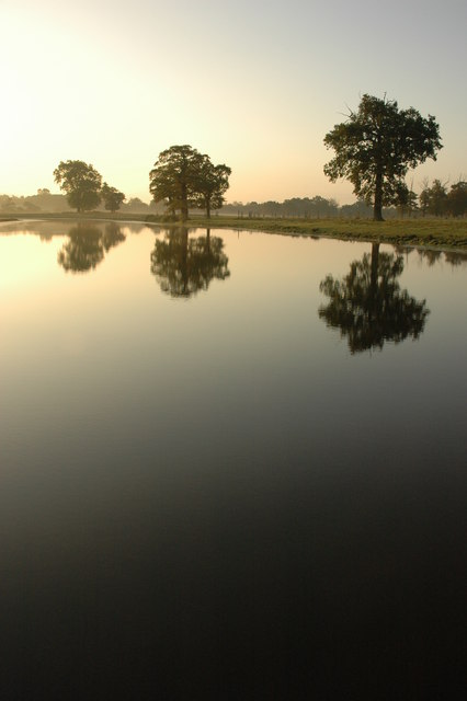 Croome Park at dawn