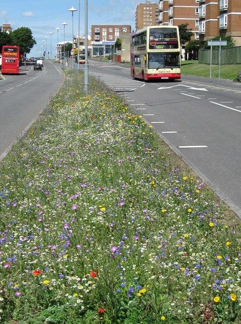 Eastern Road, Brighton