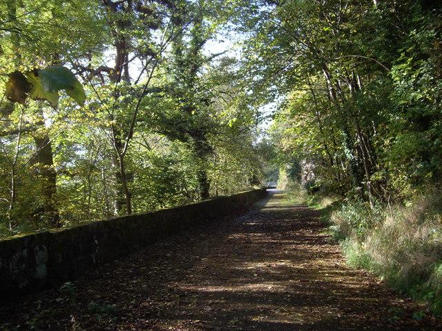 Path to Telford Bridge