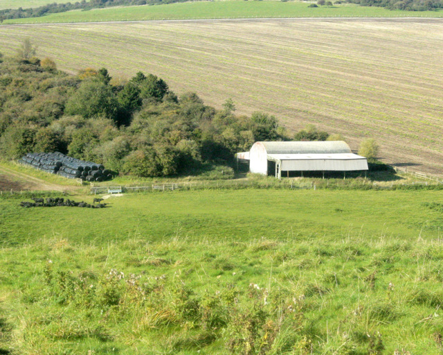 2009 : Pasture  west of Hindon Road