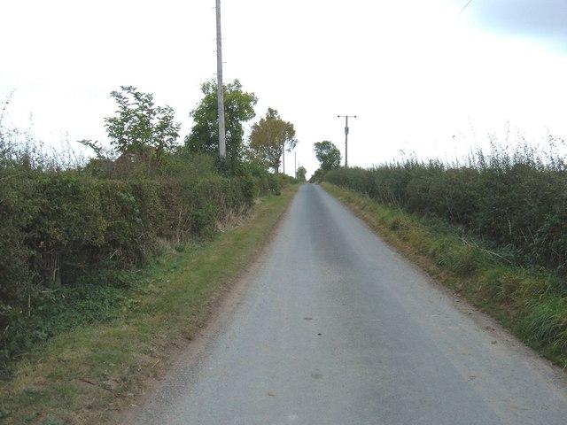 Swine Road