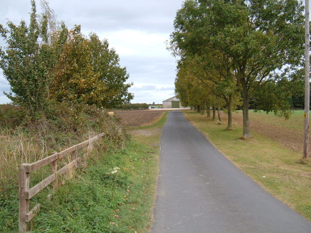 Skirlaugh Road towards Old Ellerby