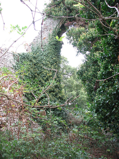 The ruined church of St Felix - overgrown chancel