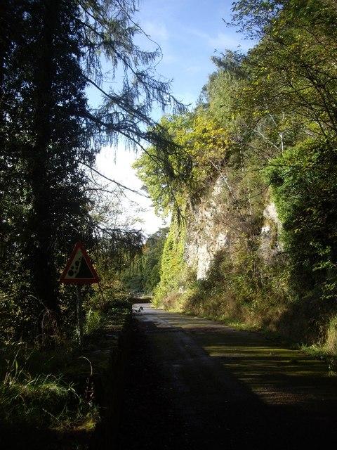 Cliff by path to Telford Bridge
