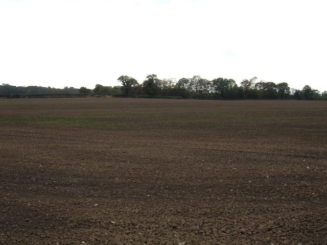 Farmland near Old Ellerby