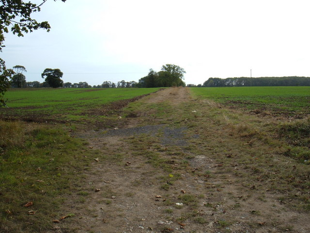 Bridleway near Wood Hall