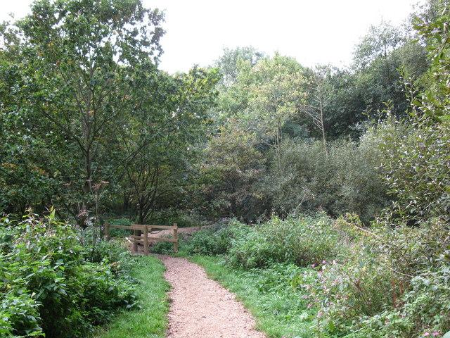 Three Castles Path near Mill Lane