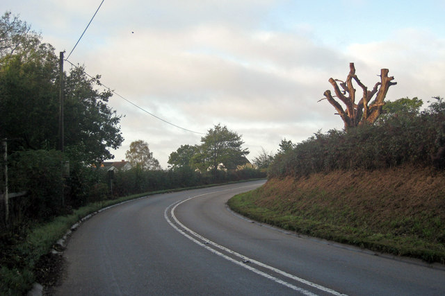 Long Bend on the A271