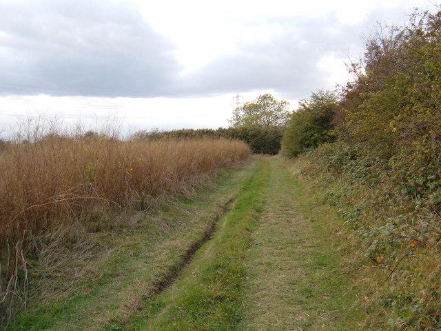 Bridleway to Wawne