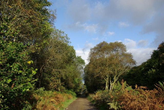 Track near Glecknabae