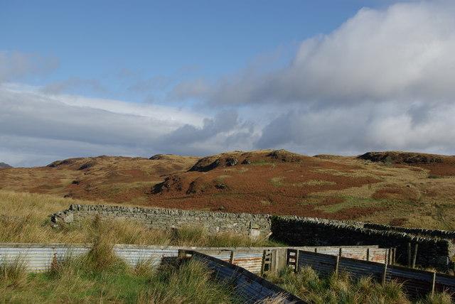 Sheepfold east of Kilmichael