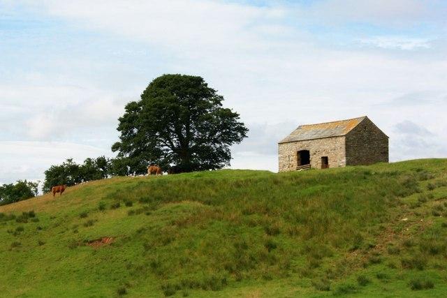 Field Barn, near Keisley