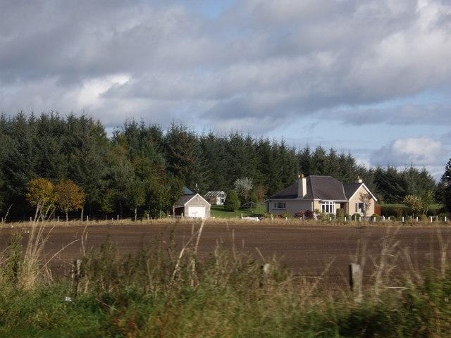 Birkenhill