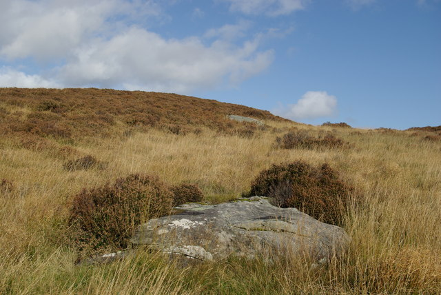Cup Marked Rock west of Muclich Hill