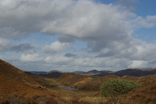 Hillside SE of Muclich Hill