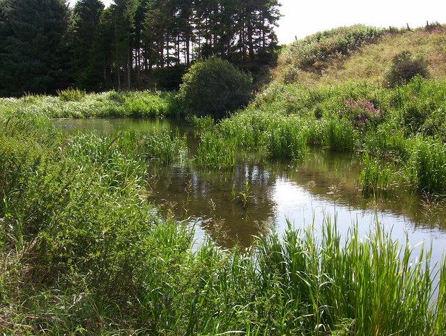 Pond below Meadowhead, Ythanwells