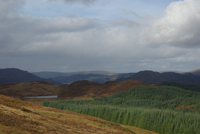 Moorland/forest boundary SE of Muclich Hill