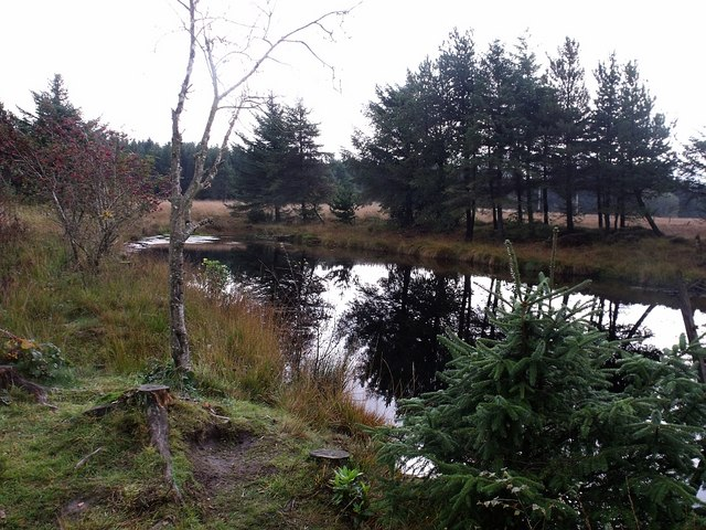Pond on Fannyside Muir
