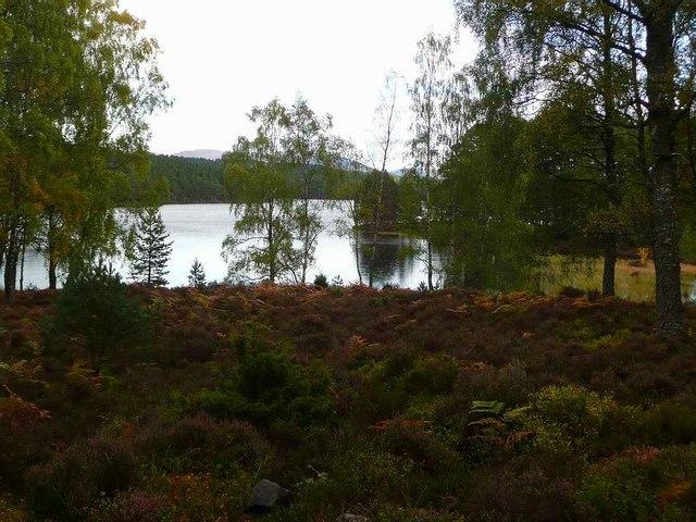 Western end of Loch an Eilein