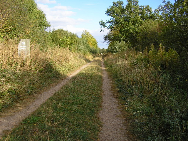 Track into Stretton Wood