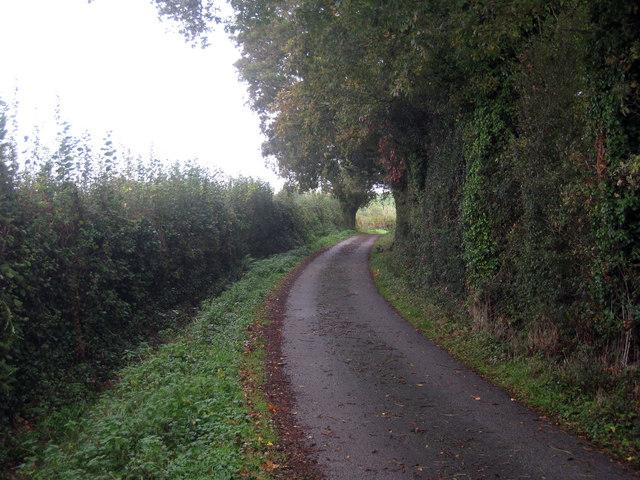 Track away from Tile Hurst Farm