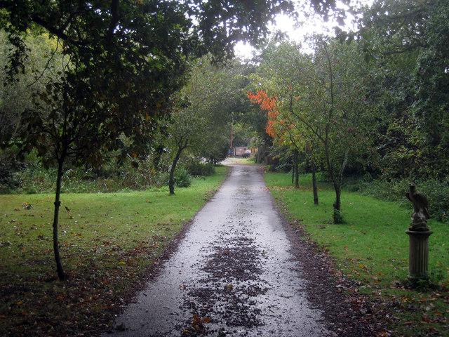Entrance track to Tile Hurst Farm