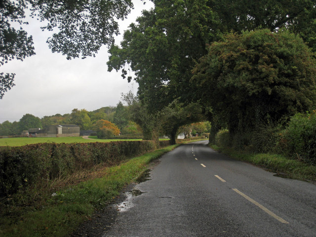 Lane to Cowbeech Hill