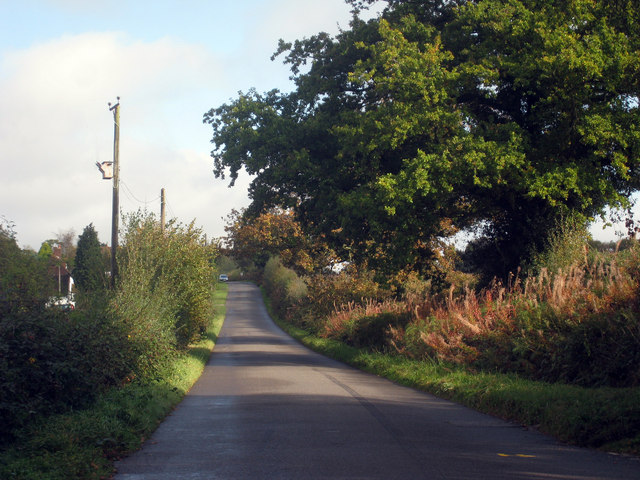 Lane to Punnett's Town