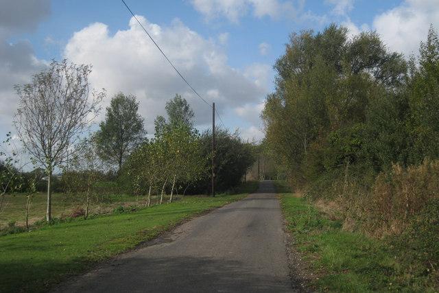 Lane near Brookland