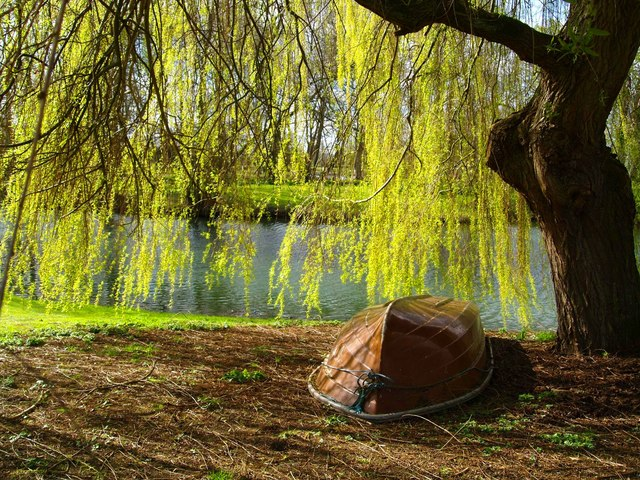 Riverside at Mapledurham