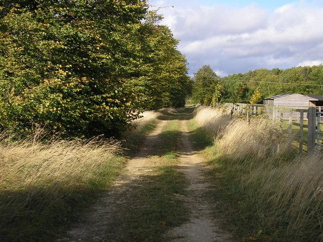 Track off Stretton Road, Clipsham