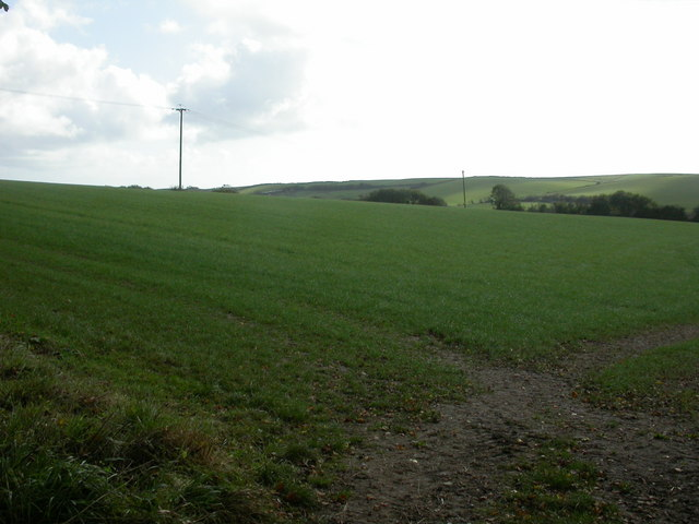 Abbotsbury, arable land