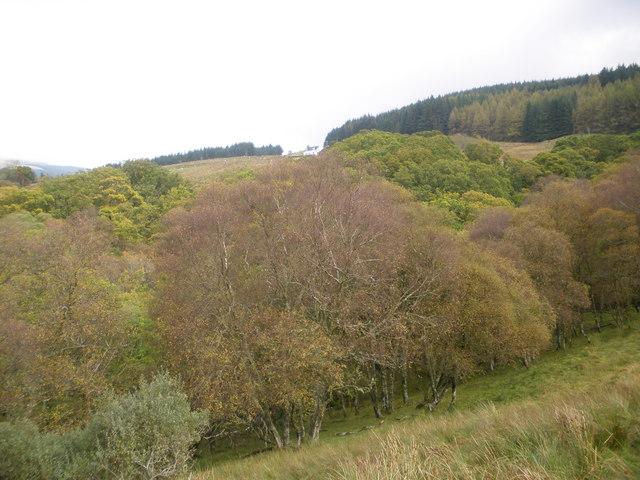 Looking across Garvie Burn to Strondavon Farm