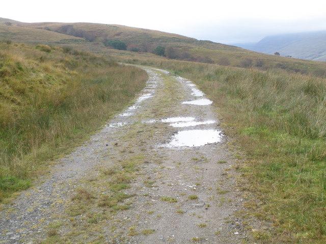 Forest track below An Cruachan