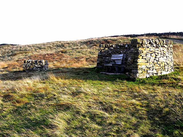 Seat at the summit of Witchie Knowe