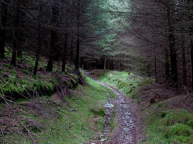 Bridleway from Abergwesyn descending into Cwm Tywi, Powys