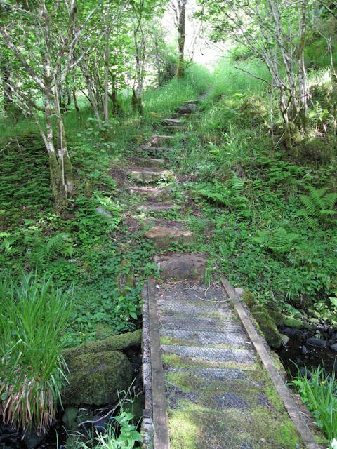 Path at Glen Nant