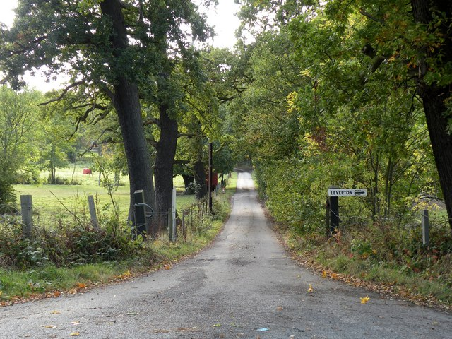 Bridleway, just north of Great Warley