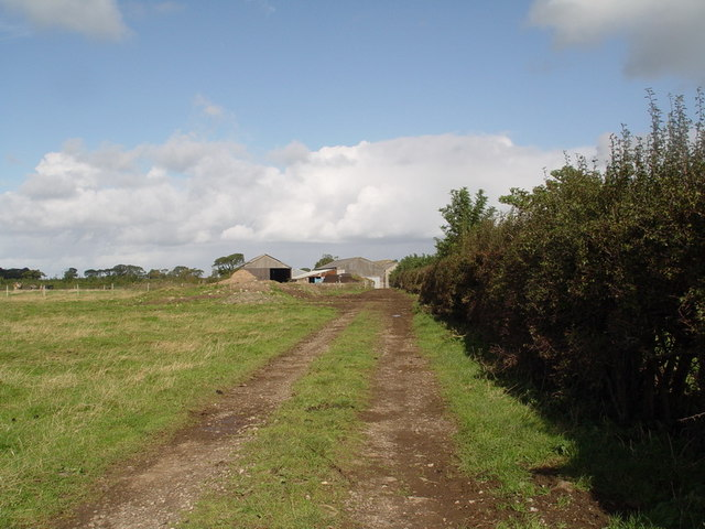 Track to Gibson's Farm