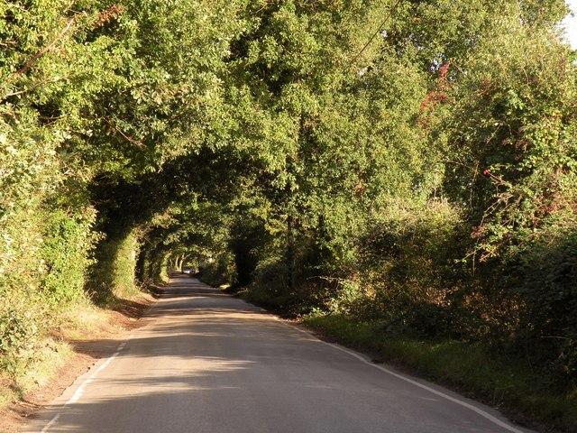 Part of Green Lane, heading towards Hutton village