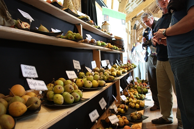 Perry Pears, Hellens, Much Marcle