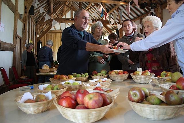 Dessert apple tasting, Hellens, Much Marcle