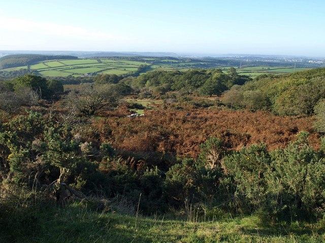 Moorland below Wotter