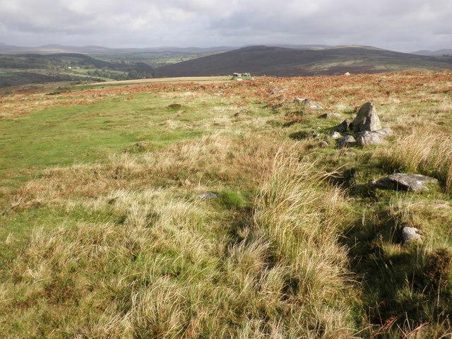 Moorland track, towards Combestone Tor