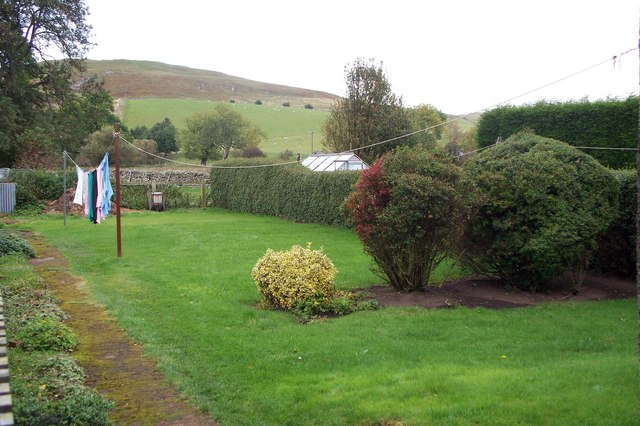Clennel Hill from rear garden at Alwinton.