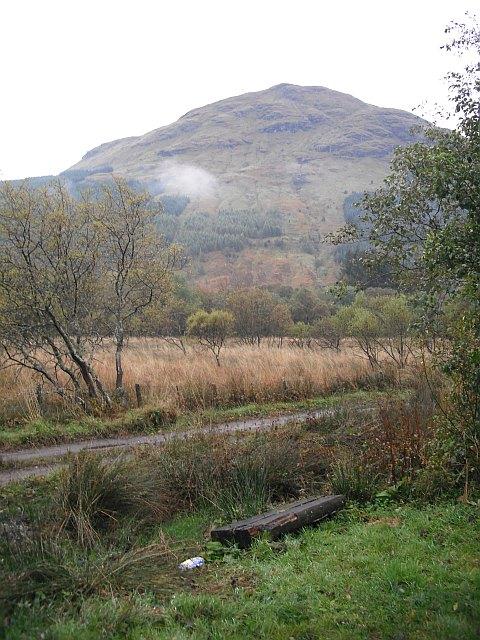 Wetland, Inverlochlarig