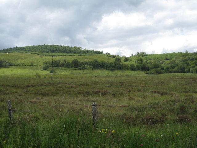 Flat area by Loch Creran