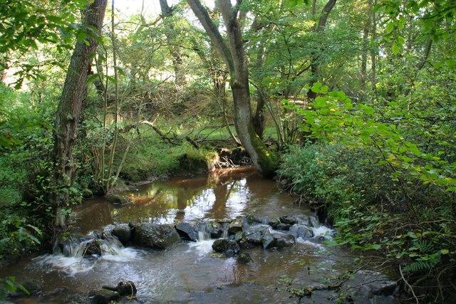 Scugdale Beck from footbridge beyond Huthwaite
