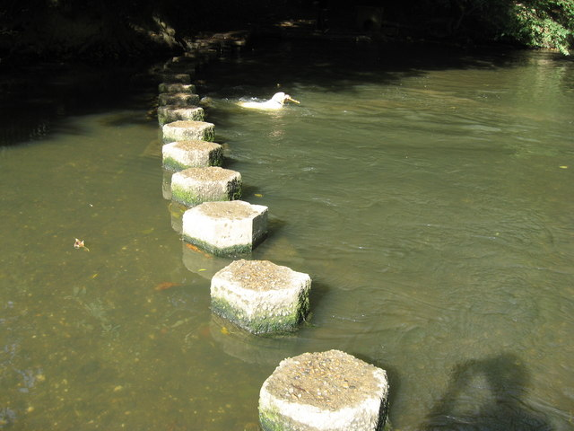 Stepping Stones in the River Mole, at the foot of Box Hill, near Dorking Surrey.