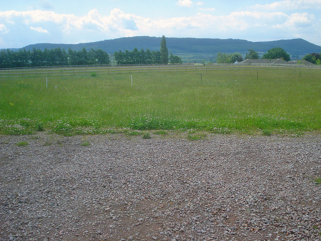 Paddocks west of Phocle Green